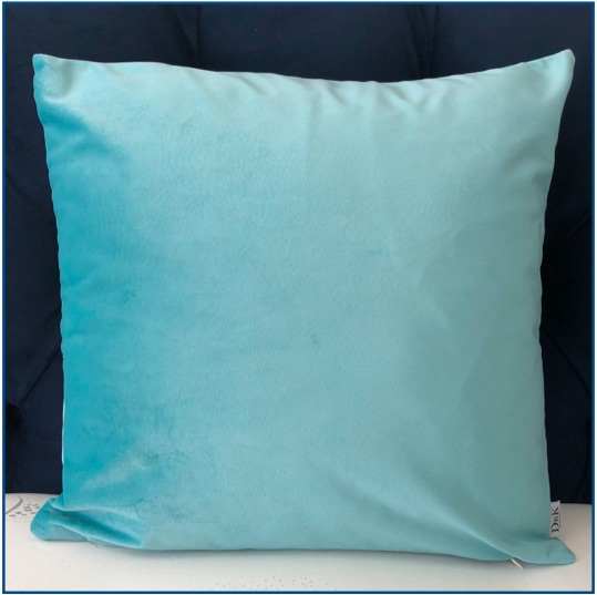 Velvet Duck Egg Blue Cushion Cover