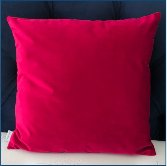 Pink Velvet Cushion Cover